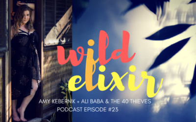 Episode #23 :: Ali Baba and the 40 Thieves + Amy Kebernik