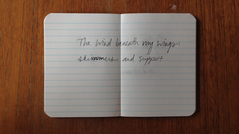 The wind beneath my wings: skimmers and support